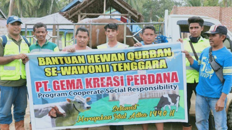 PT GKP memberikan kurban sapi